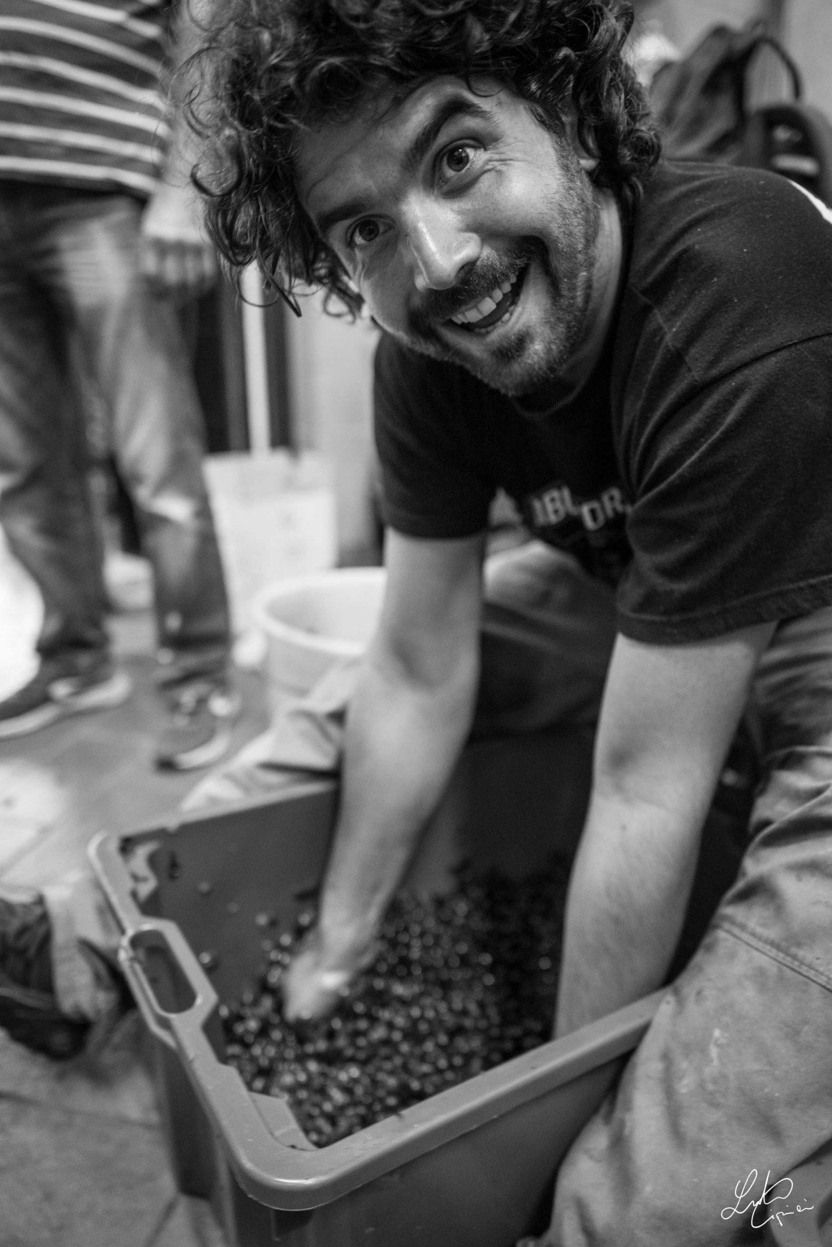 Paolo lavora uva
